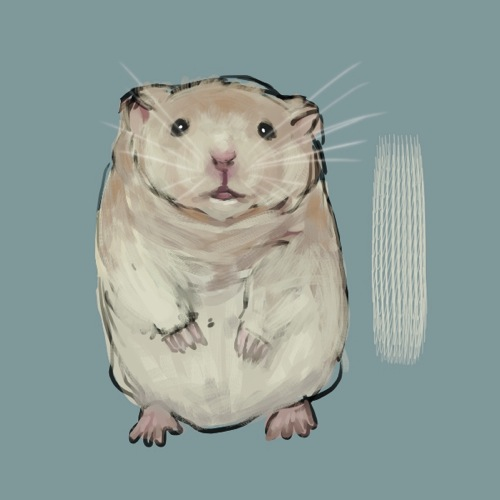 Hamster 20140201